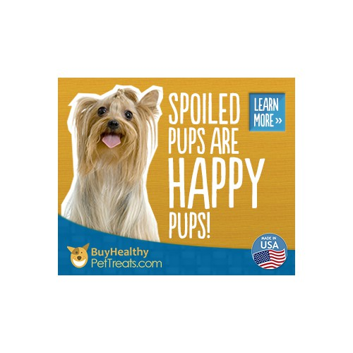 Web Banner for HealthyPetTreats.com