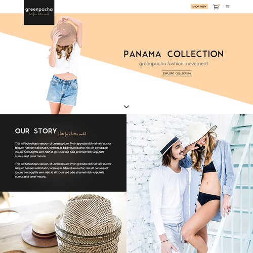 Wordpress Theme Design for the Hats Online Store