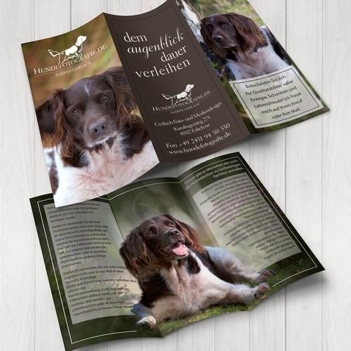 Tri-Fold Brochure For Amazing Photographer