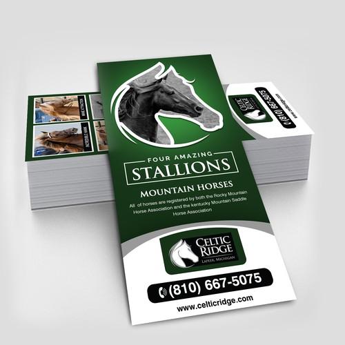 Horse Farm Rack Card