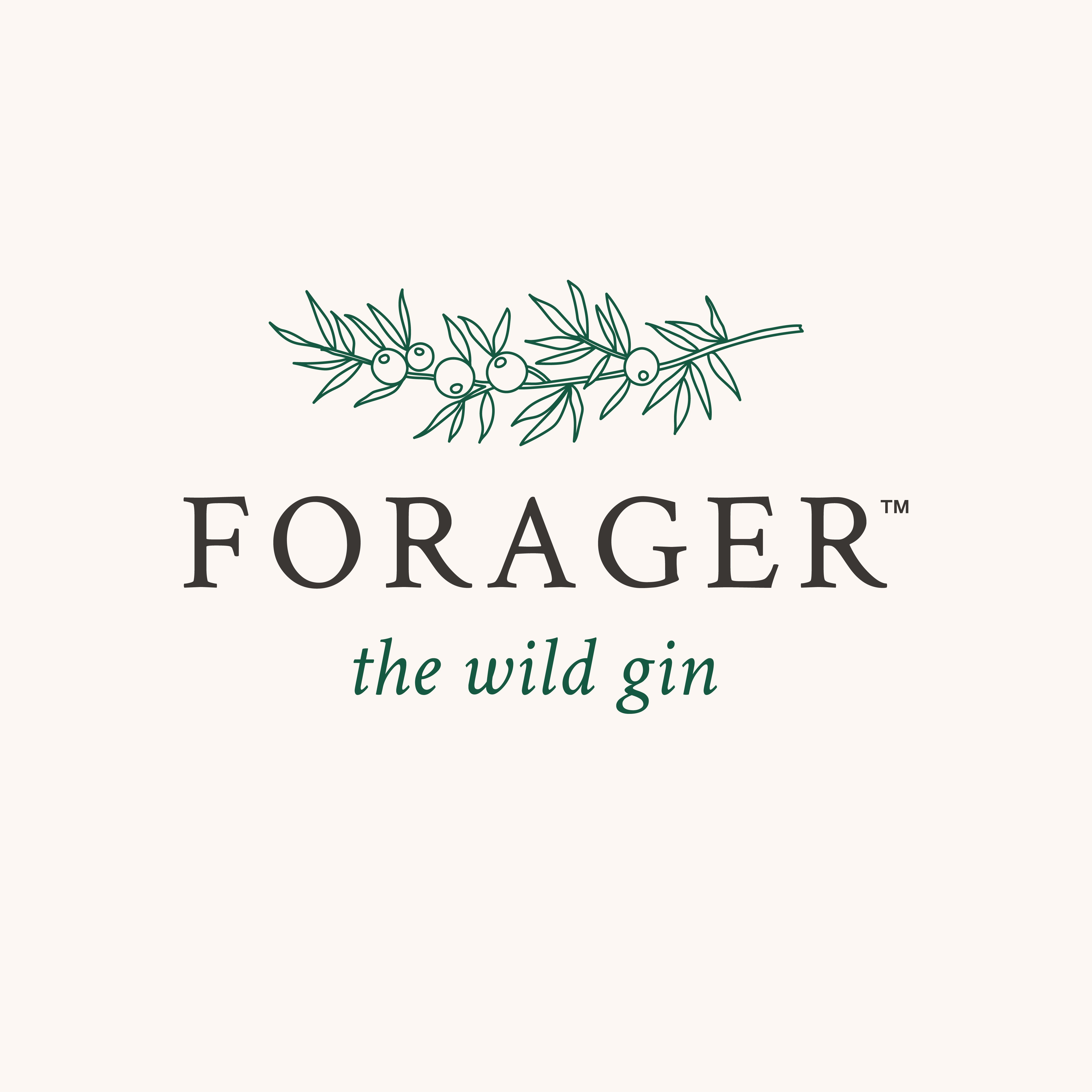 We need a logo for a sustainably packaged and produced American Gin