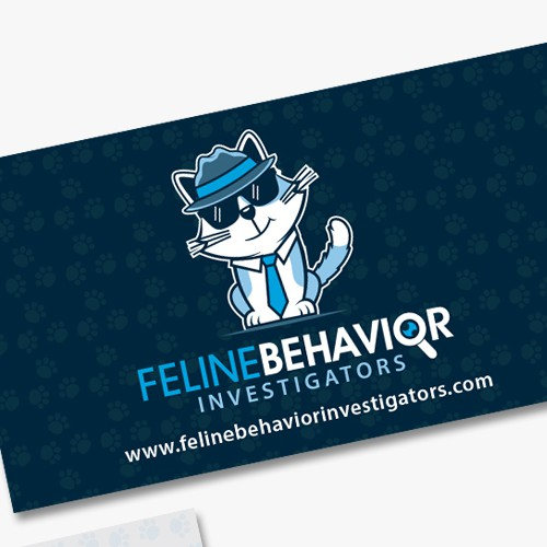 FELINE BEHAVIOR INVESTIGATOR