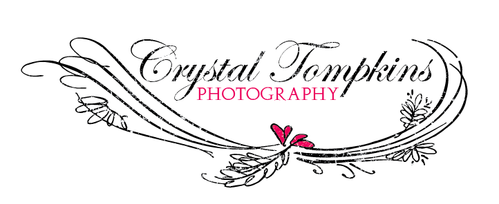 Help Crystal Tompkins Photography with a new logo