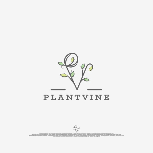 Logo created for eCommerce dedicated to the sale of decorative plants
