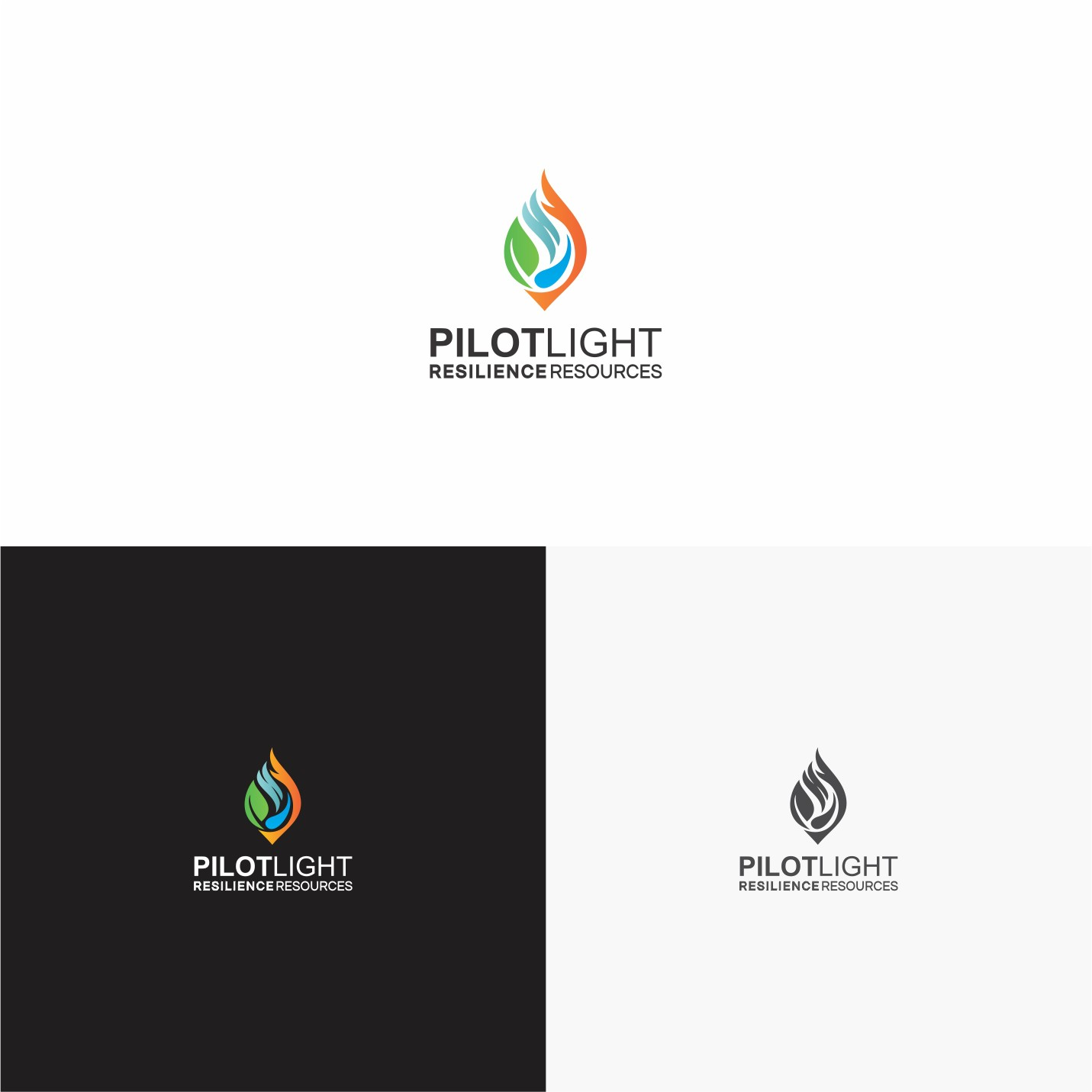 Create eye-catching logo for startup consultancy PilotLight Resilience Resources