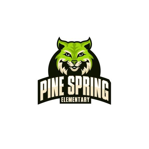 Pine Spring Elementary