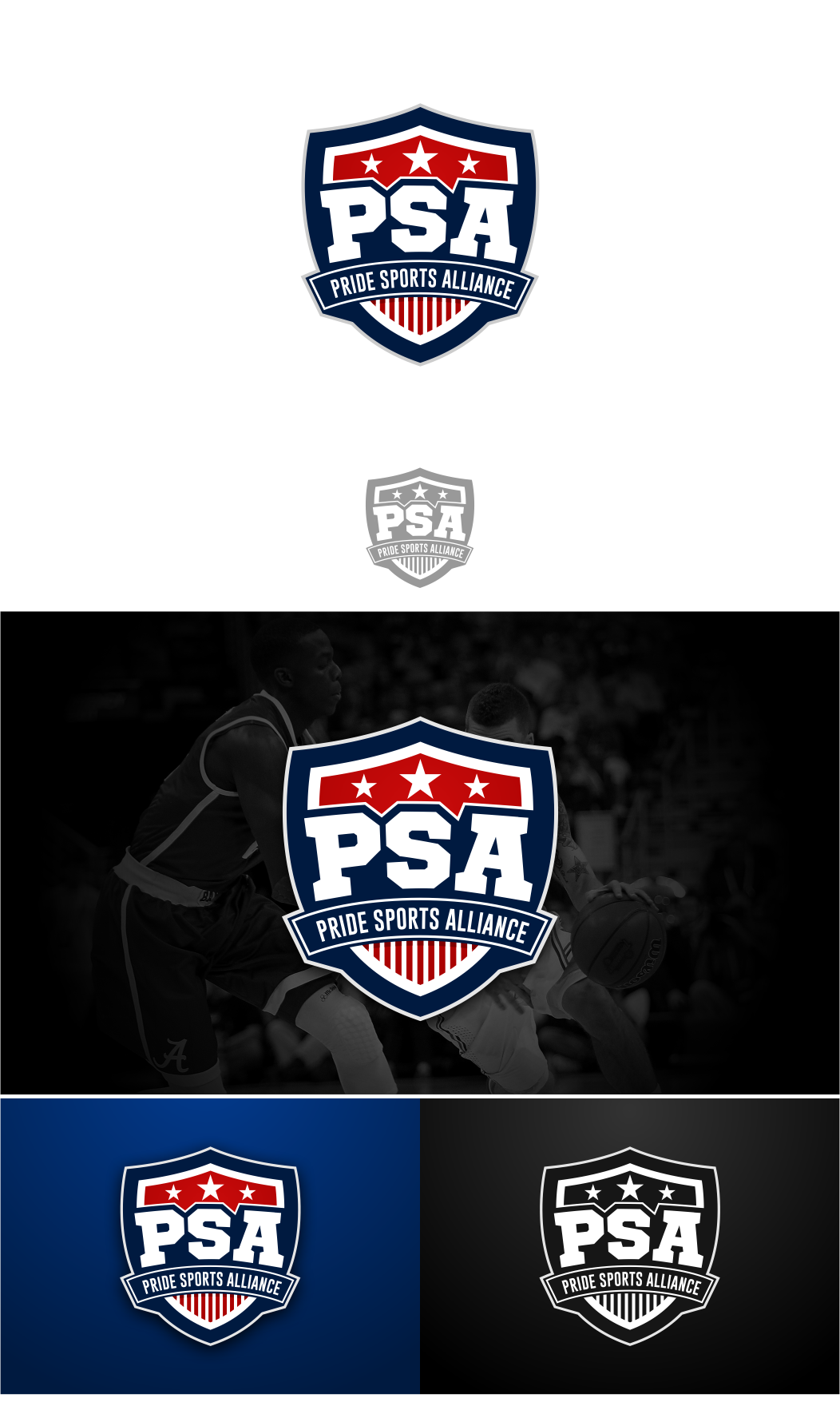 Community Sports Group Looking to go Pro with The Logo!