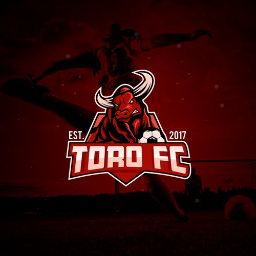 sport logo for TORO FC