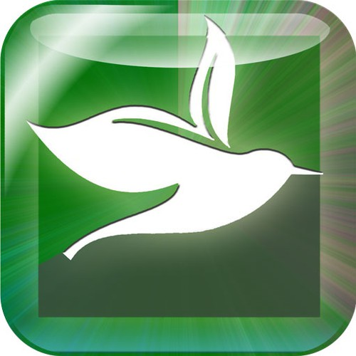 Help Nature Nation with a new icon or button design