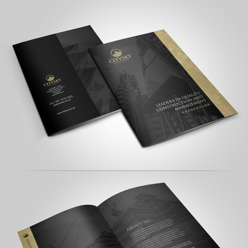 CitySky Investment Group BROCHURE