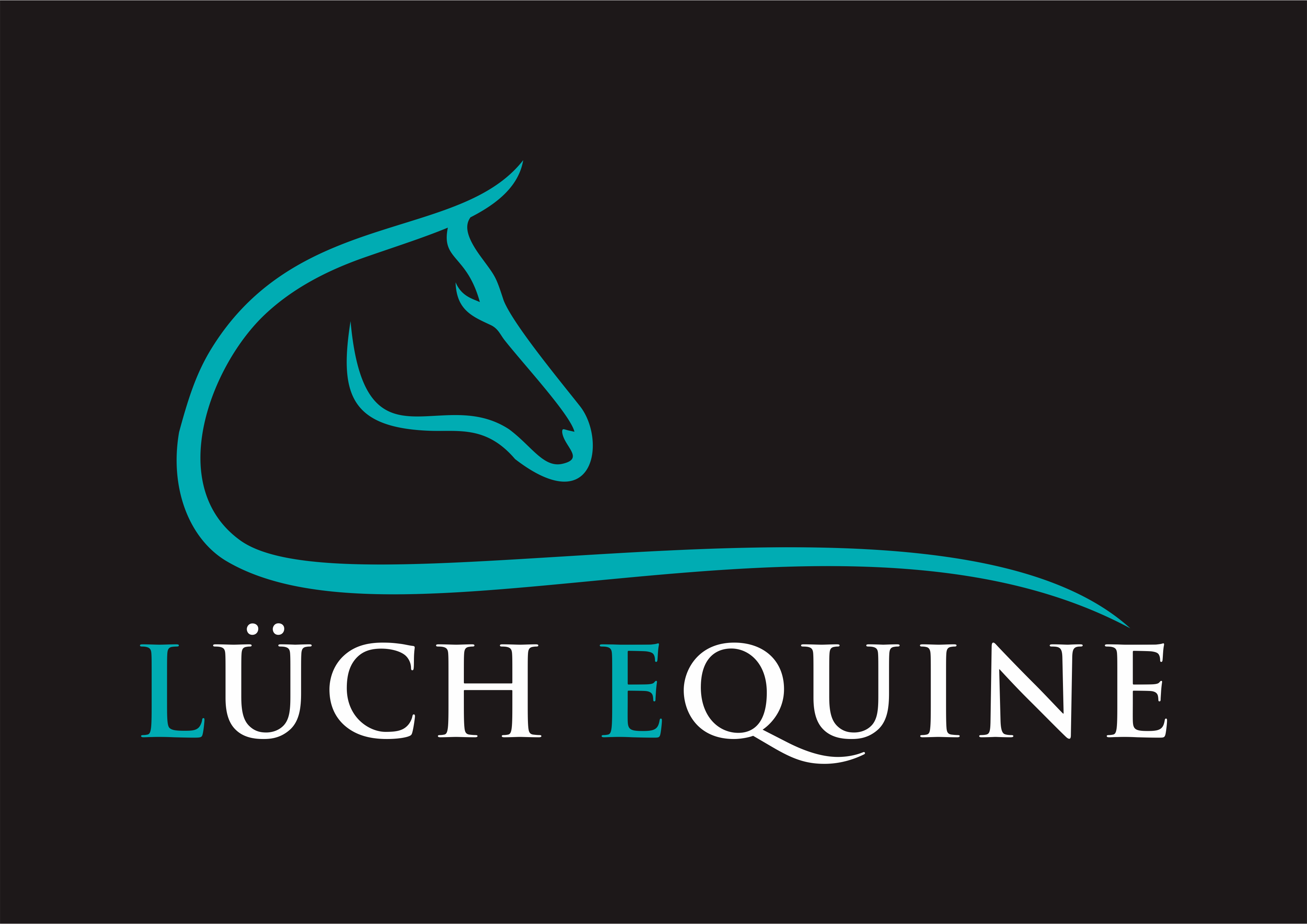 Create a steezy logo for an exciting equestrian business!