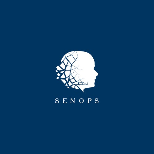 Professional Logo for a company that sells Neuro Cranial Plates for facial recronstruction