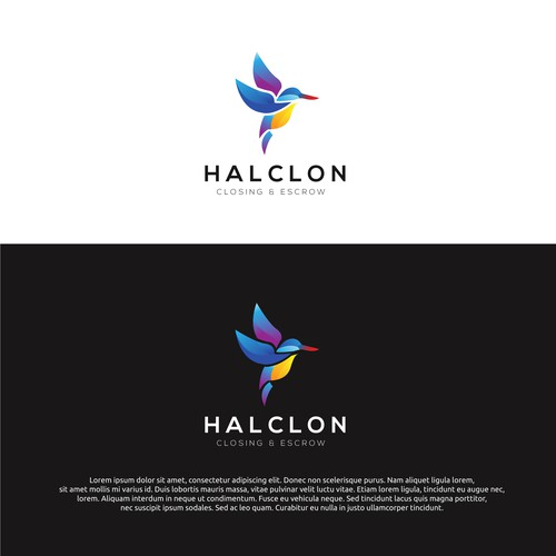 logo concept for halclon