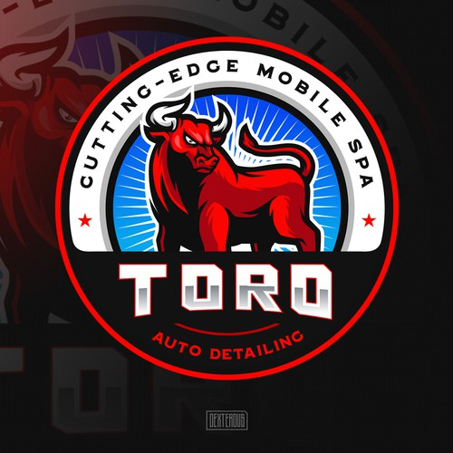 Toro Auto Detailing