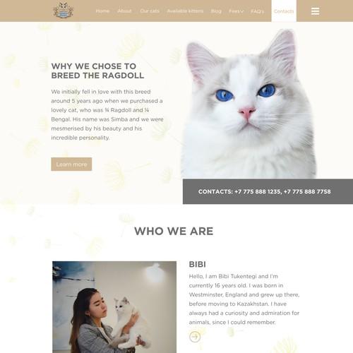 Dandellion Cats Website design project