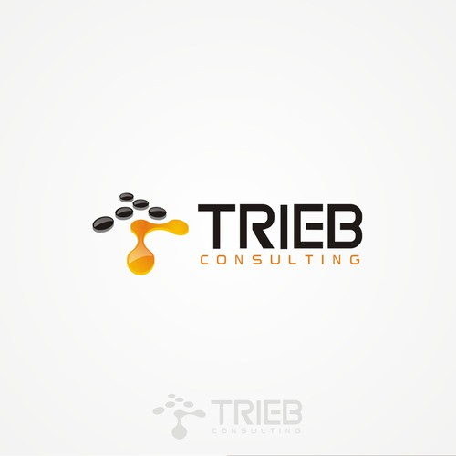 TRIEB Consulting