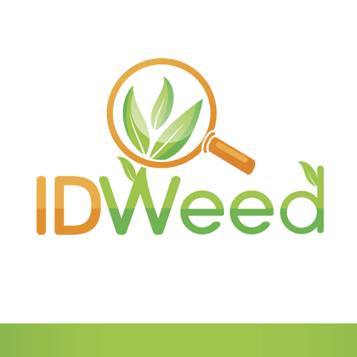 Logo Concept for IDWeed