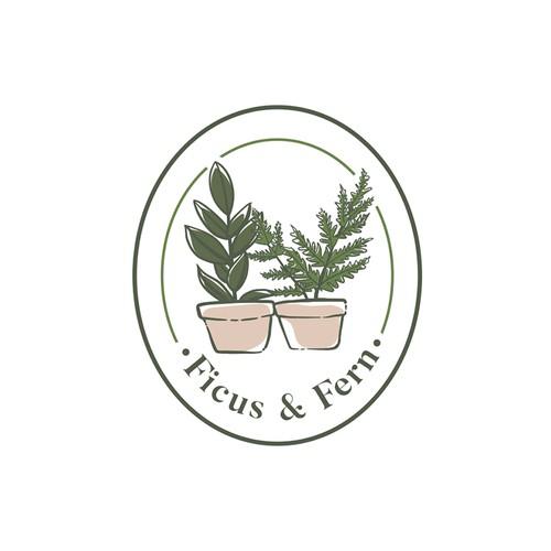 ficus & fern