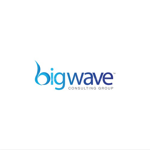 BigWave Consulting Group