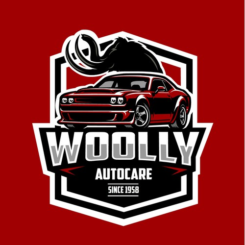 Bold otomotive/car concept for Wolly Autocare