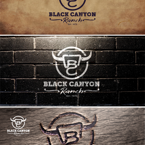 Create a logo that captures the heart of Black Canyon Ranch