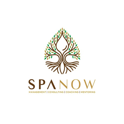 Logo Design for SPANOW