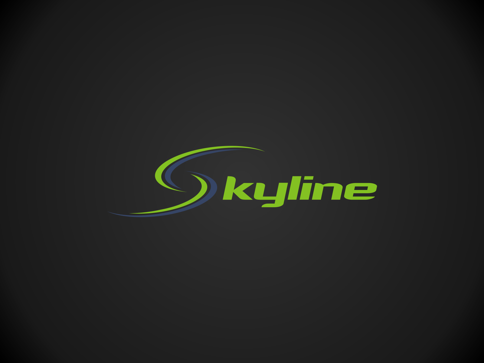 logo and business card for Skyline
