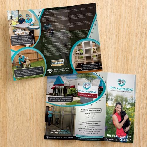 Engaging Brochure for your Animal Hospital & Pet Resort