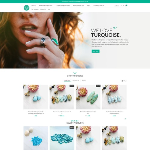 Website design for Turquoise Moose