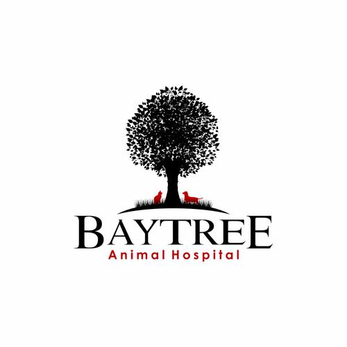 Wonder vet practice needs an amazing new logo