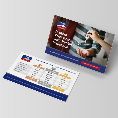 Texan Insurance - Renters Insurance Flyer