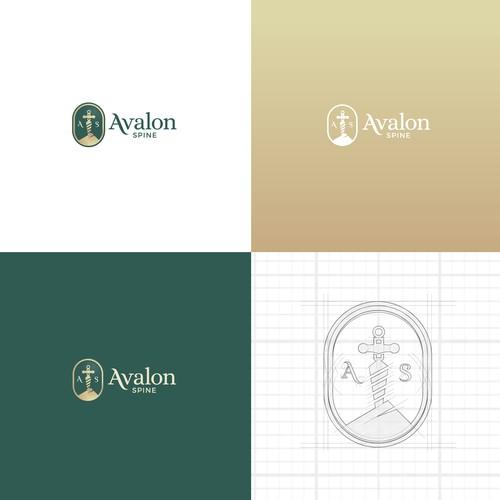 Branding concept for Avalon Spine.