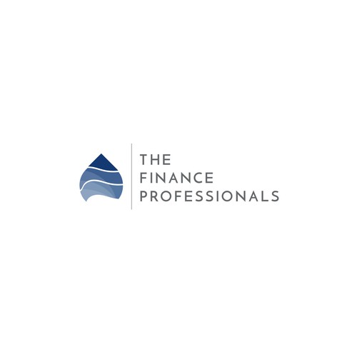 The Finance Professionals