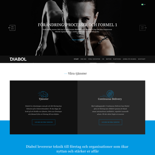 DIABOL - Swedish Consulting Company