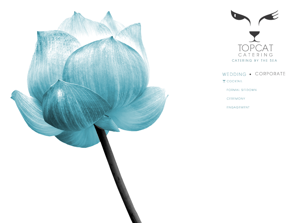 Create the next website design for Top Cat Catering