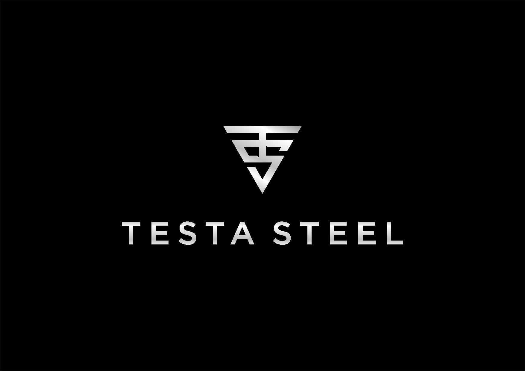 Design a powerful logo for testa steel.