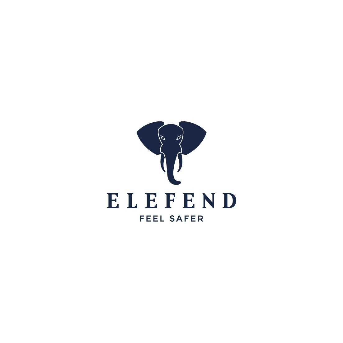 Logo design for new security company