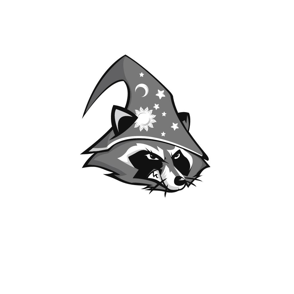 Illustrate our mascot: a raccoon wearing a wizard hat