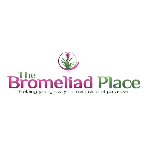 The Bromeliad Place needs a new logo