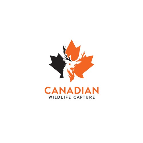 Canadian Wildlife Capture