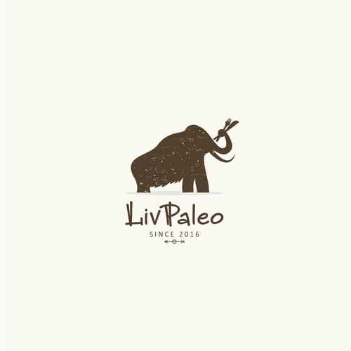 Paleo experience design