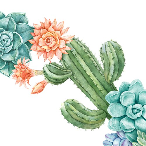 Botanical hand drawn design. Hand-drawn floral cacti watercolor illustration for greeting card, invitation, thank you card.