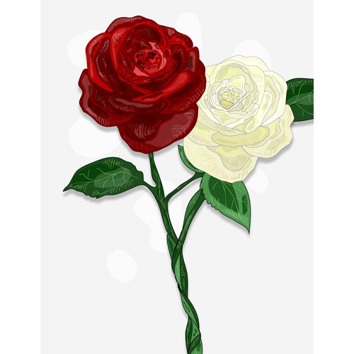 Entangled Roses illustration for YA novel