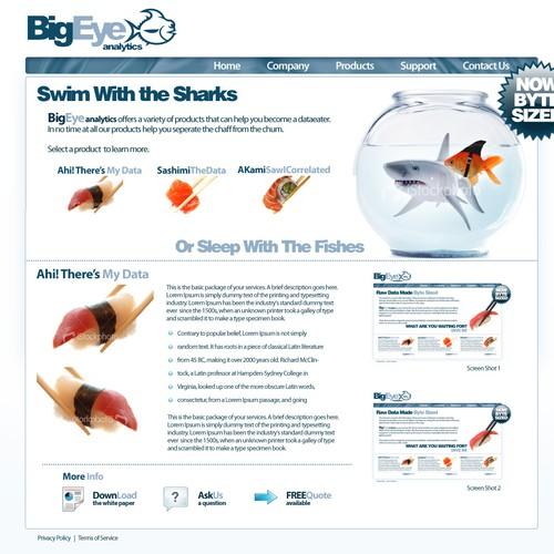 BigEye Analytics Website
