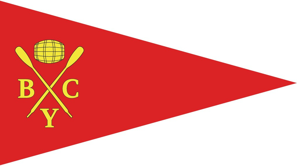 Design official flag for Yacht Club in Switzerland