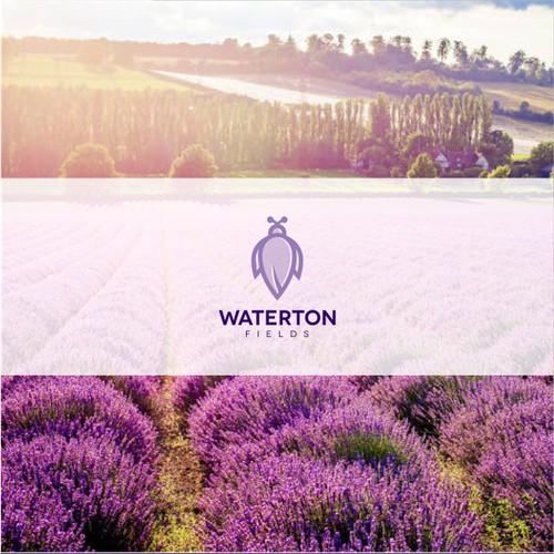 Lavender field logo