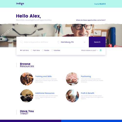 Search Homepage Design for Indigo