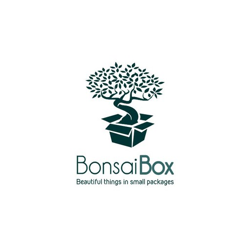 Create a image capturing the aesthetic of Japanese Bonsai trees.