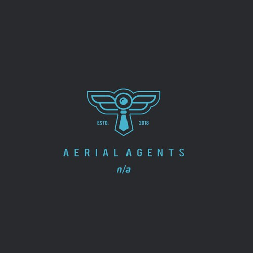 Drones photography logo