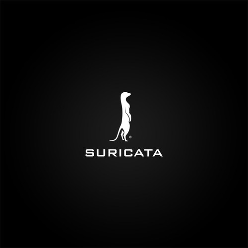 Looking for a logo for Electronic Music Production Project Suricata